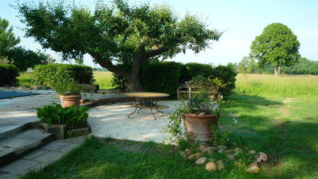 jardinmarcferaud-3